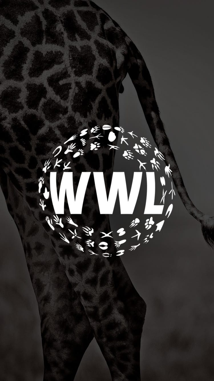 where is the wildlife logo